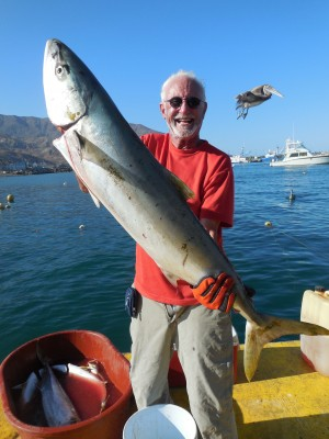 Yellowtail fishing with Cedros Outdoor Adventures