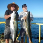 Yellowtail fishing July Cedros Island Mexico