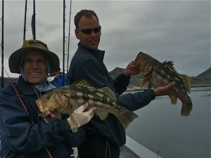 calico bass fishing Cedros island
