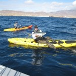 Kayak Fishing at Cedros Island 4