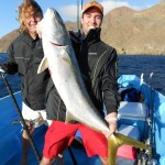 Yellowtail Fishing Cedros Island Photo Gallery